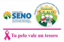 Fundación SENO en nuestras oficinas